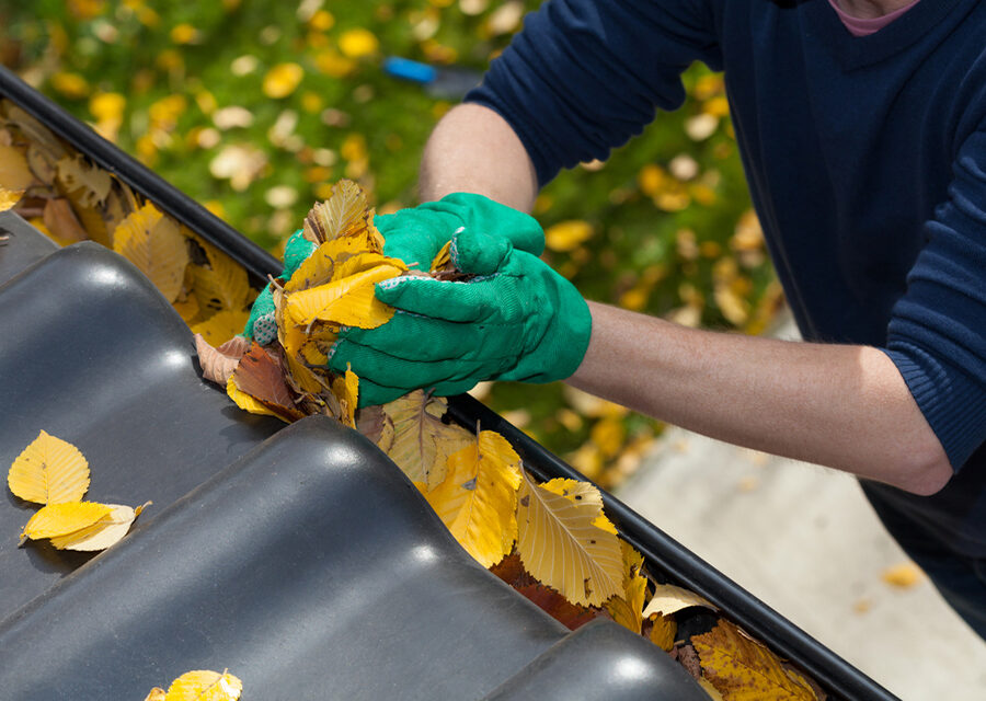 Gutter Cleaning San Fransico,Los Angeles,Oakland,Gutter Cleaning Ohio,Dryer Vent Cleaning San Fransico, WE Restoration